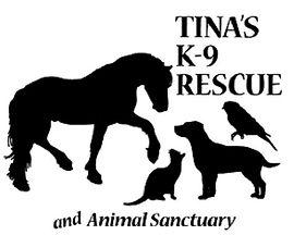 Tina K9 Adopt Rescue Dog Cat Animals Shelter Sanctuary