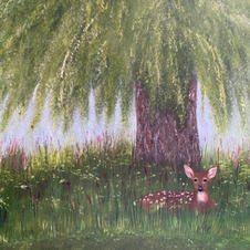 Fawn under Willow