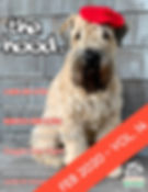 Feb2020 Cover_thumbnail.jpg