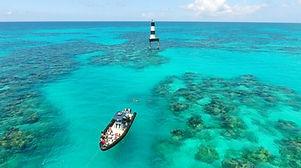 Zeus Snorkel Safari.jpg