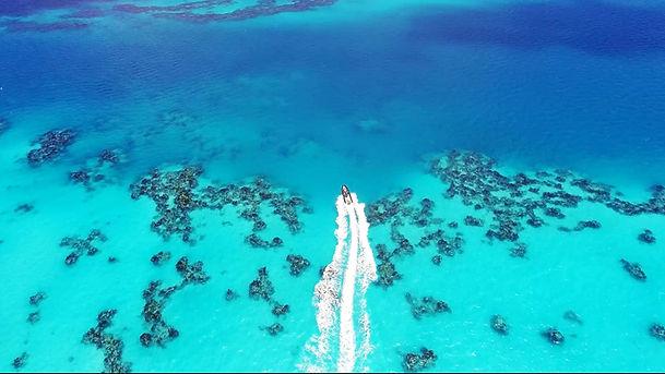 Snorkel Safari 3.jpg