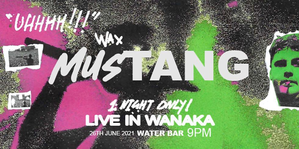 Wax Mustang - LIVE IN WANAKA