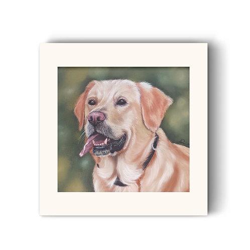 Golden Labrador Print - Happy Chappie