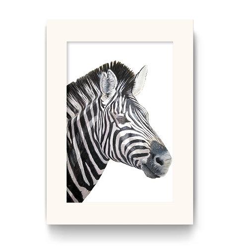 Zebra Print - Lucky the Zebra