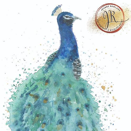Colour Splash Peacock