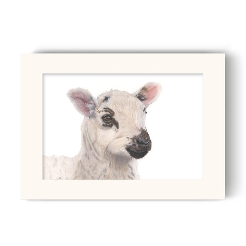 Sheep Print - Barbara the Bonnie Lamb
