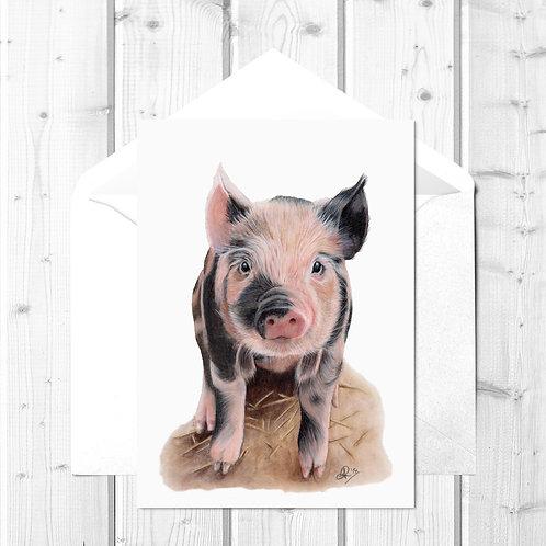 Pig Fine Art Card - Portia the Piglet