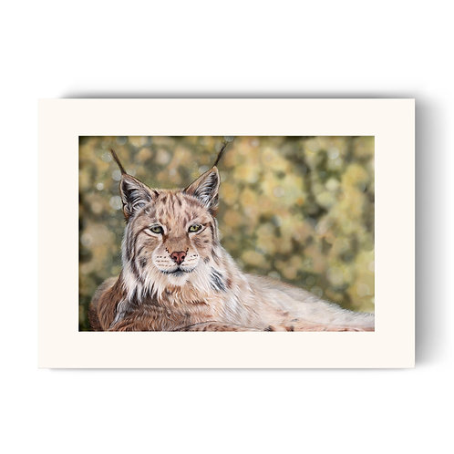 Lynx Print - Vigilance