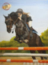 Horse Jumping in Pastel