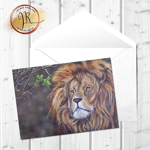 Lion Fine Art Card - Rory the Red King