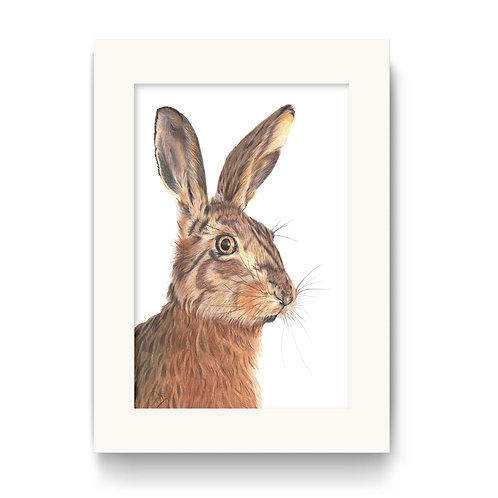 Hare Print - Hare We Go!