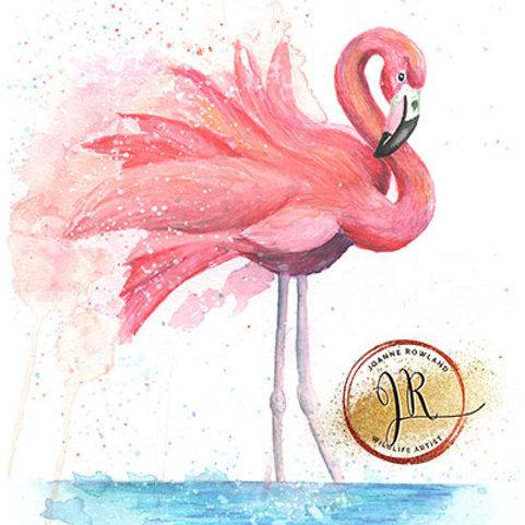 Colour Splash Flamingo