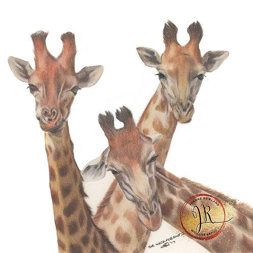 Giraffe Family Selfie