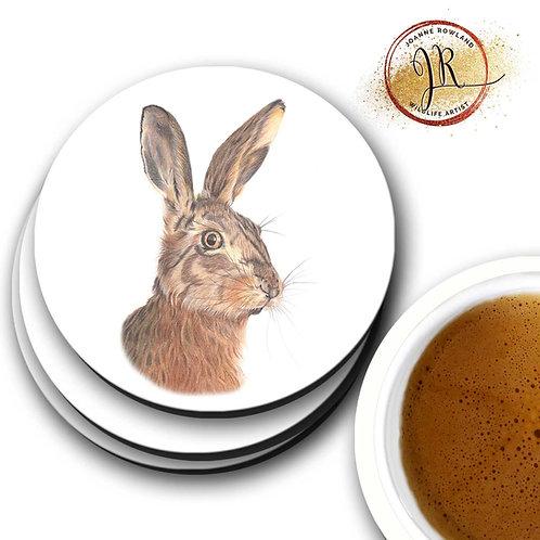 Hare Coaster - Hare We Go!