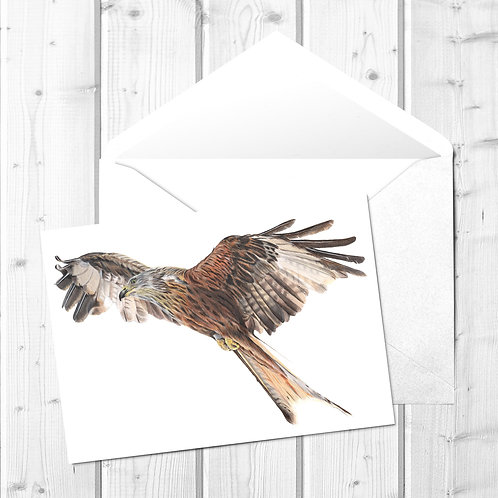 Red Kite Fine Art Card - Rowan the Red Kite