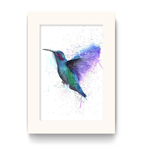 Hummingbird Print - Colour Splash Hummingbird