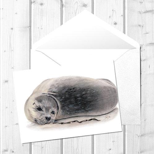 Seal Fine Art Card - Wor Sammy