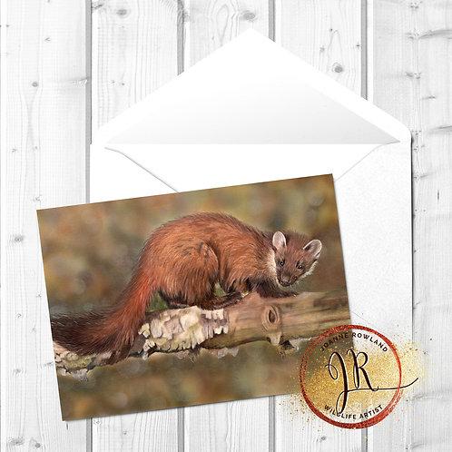Pine Marten Fine Art Card - Endurance
