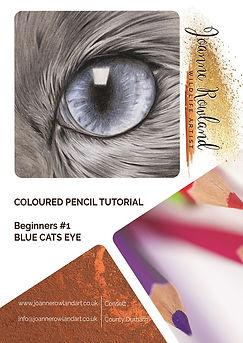 B#1_Blue_Eyed_Cat_Workbook FRONT v2 SMAL
