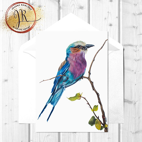 Lilac Breasted Roller Fine Art Card - Amani