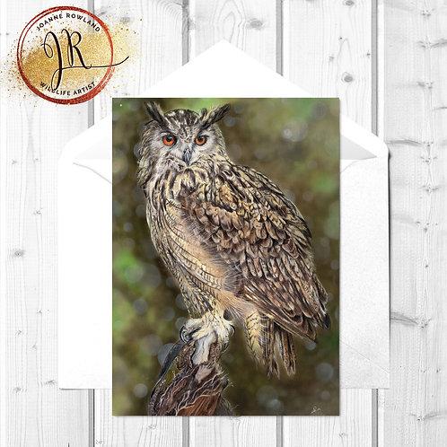 Owl Fine Art Card - Imperial the Eagle Owl