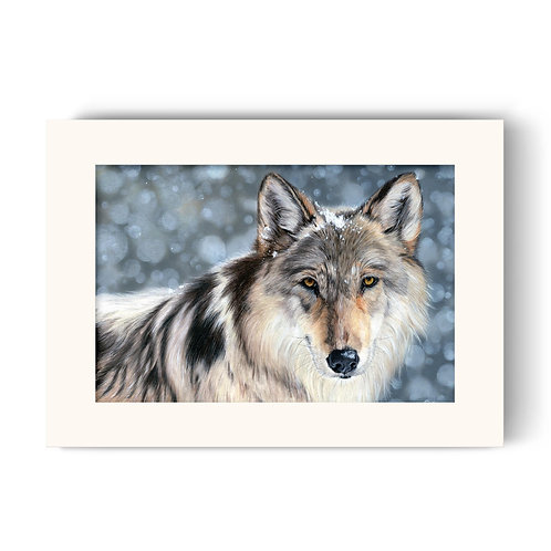 Wolf Print - Enigma the Wolf