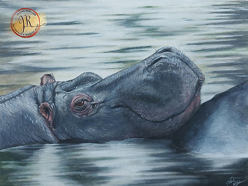 Maji Mtoto - Hippo