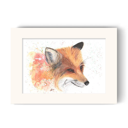 Fox Print - Colour Splash Fox