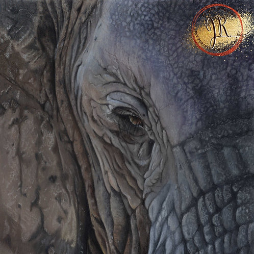 Themba - African Elephant