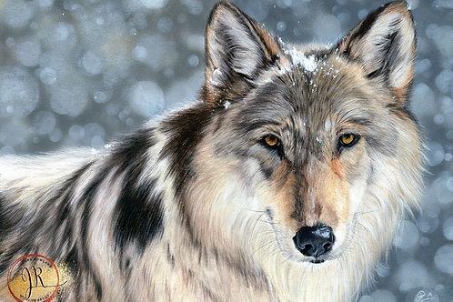 Enigma - Wolf