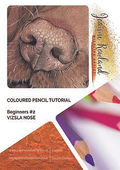B#2_Vizsla_Nose_Workbooksml.jpg