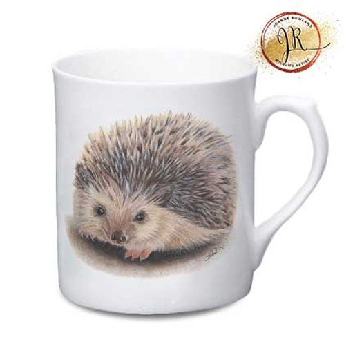 Hedgehog China Mug - Huggy the Hedgehog