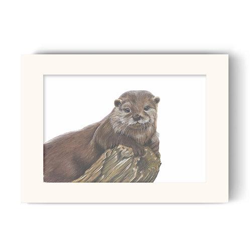Otter Print - Otterley Adorable
