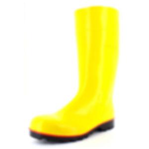 megajan-giallo.jpg