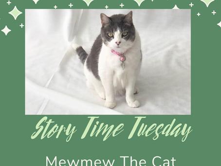 Mewmew The Cat