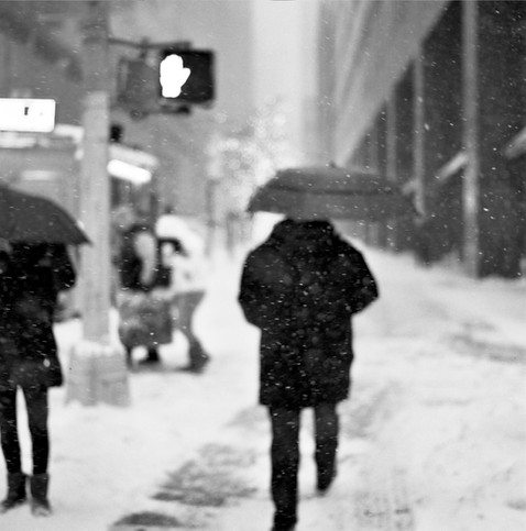 Winter Umbrella
