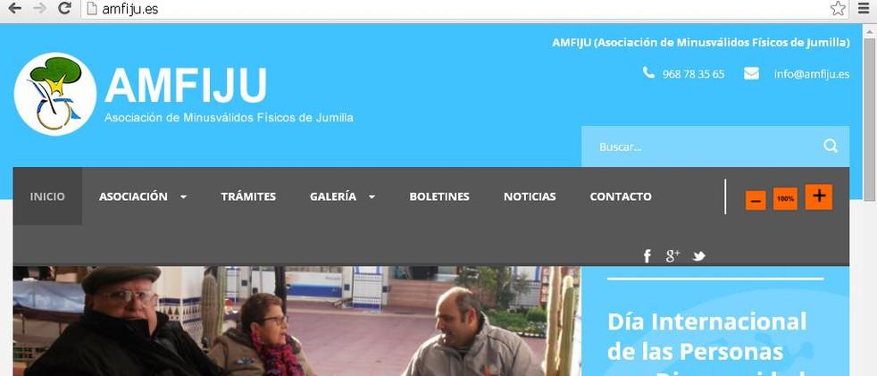 Desarrollo web AMFIJU