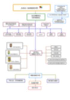 2020 Organigrama.jpg
