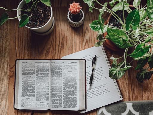 Boletín de oración / 26 de Octubre del 2020