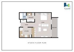 DMM Studio