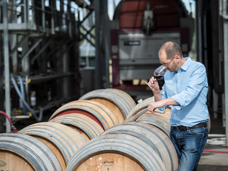 Award winning viognier in the winery.