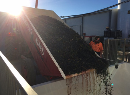 200 tonnes and still going!