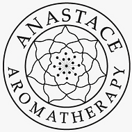 Anastace Company Limited.png