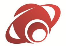 Netzone System Ltd.png