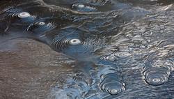 Thermal mud, Rotorua
