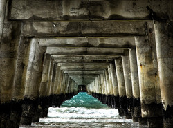Under Tologa Bay Wharf