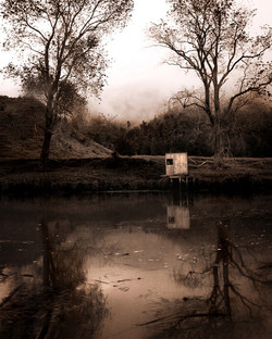 Whitebaiters stand, Mokau River