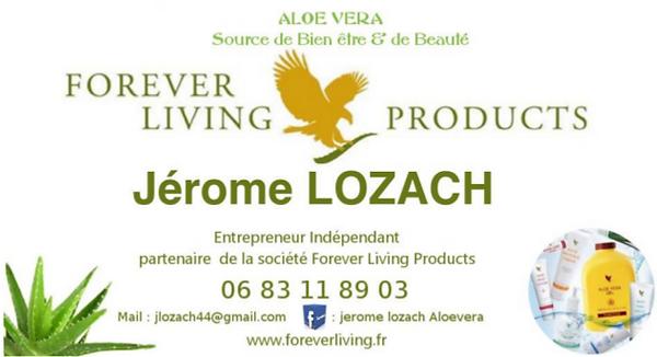 Forever Jerome Lozach ELFS Cher Region centre val de loire Bourges