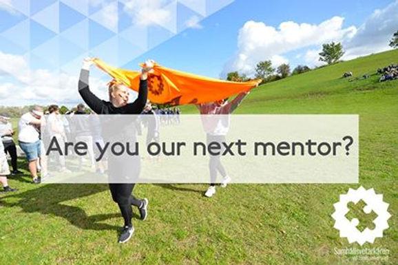 mentor web.jpg