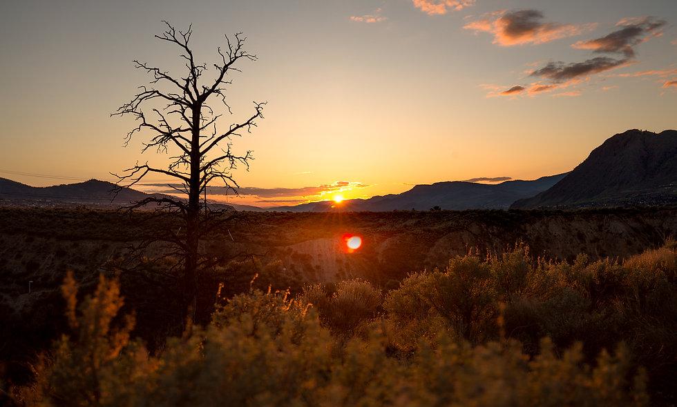 Classic sunset.